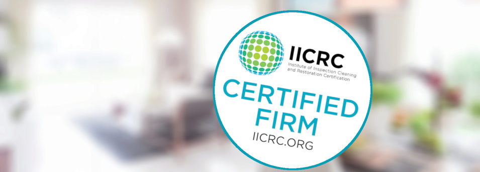 IICRC Certified Master COIT