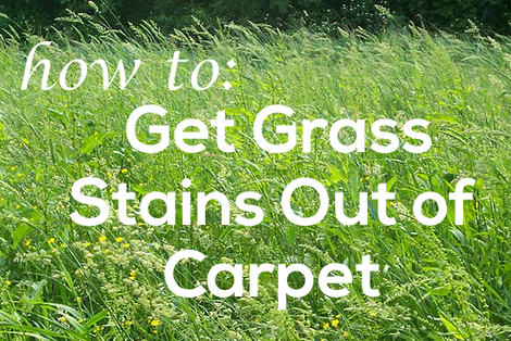 how to get grass stains out of carpet