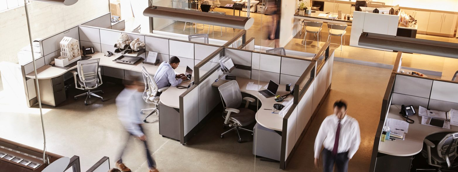 Office with Cubicles
