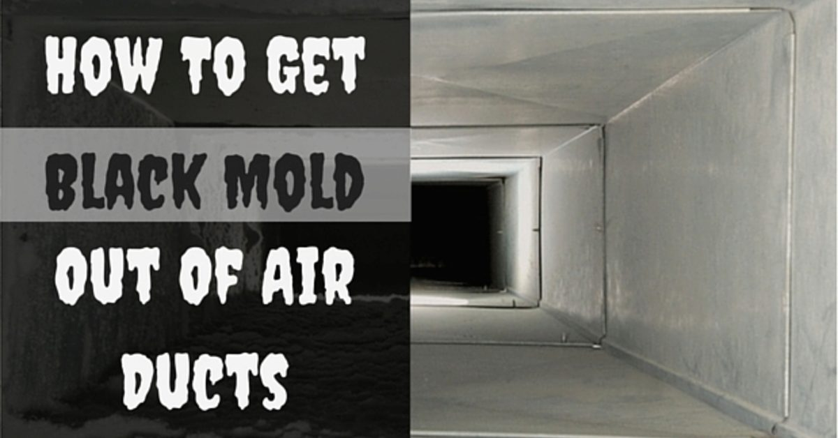 How To Get Black Mold Out Of Air Ducts Coit
